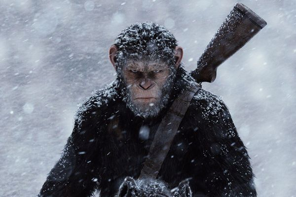 Planet of the Apes Best English Movies on Hotstar